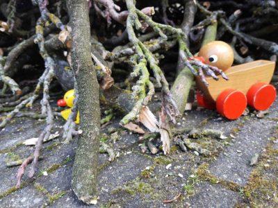 eendjes in kreupelhout